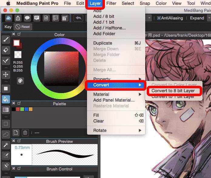 medibang paint pro 24.5
